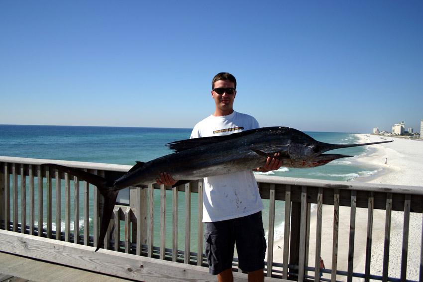Pensacola Beach Kid Friendly Fishing Tour